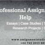 Professional Assignment Writers
